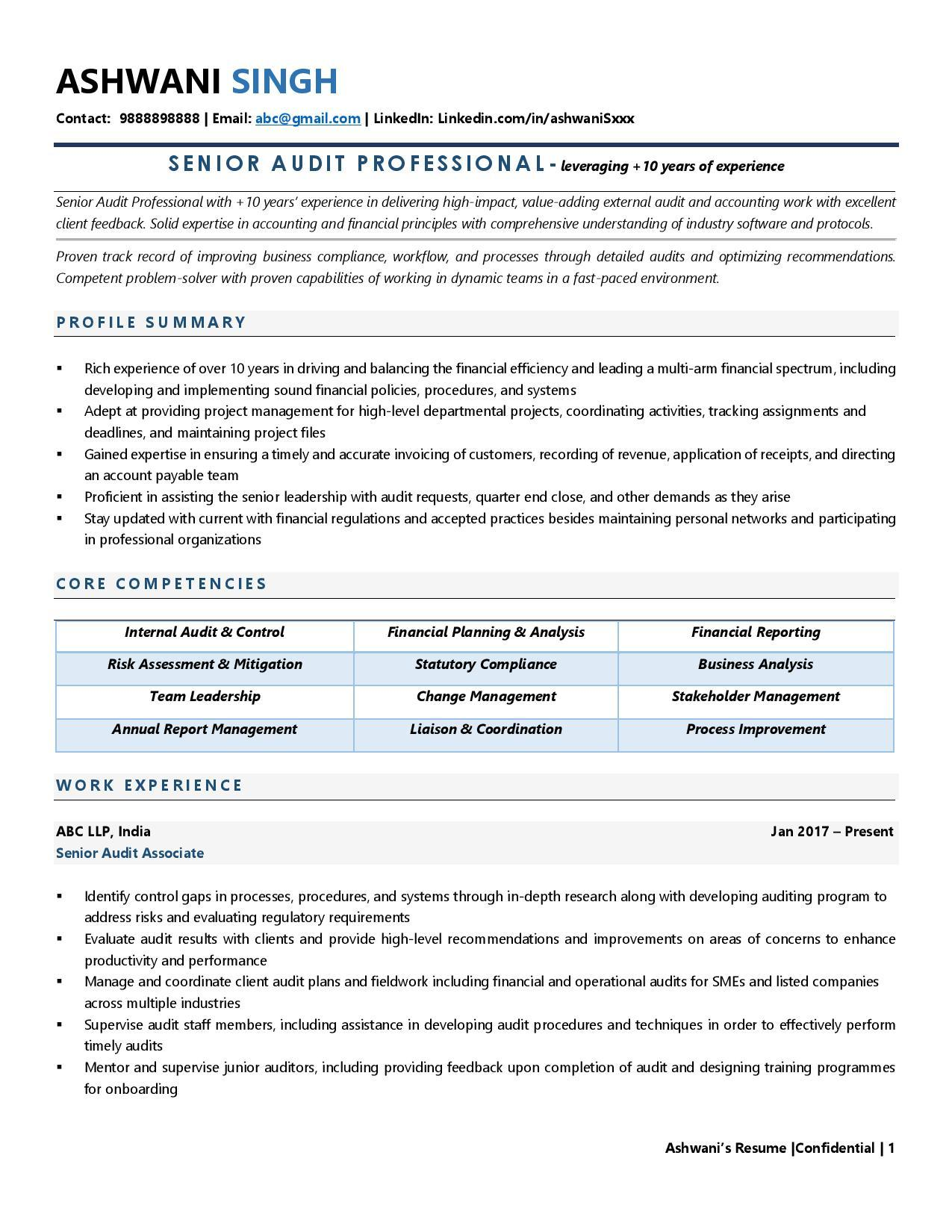 Auditor - Resume Example & Template