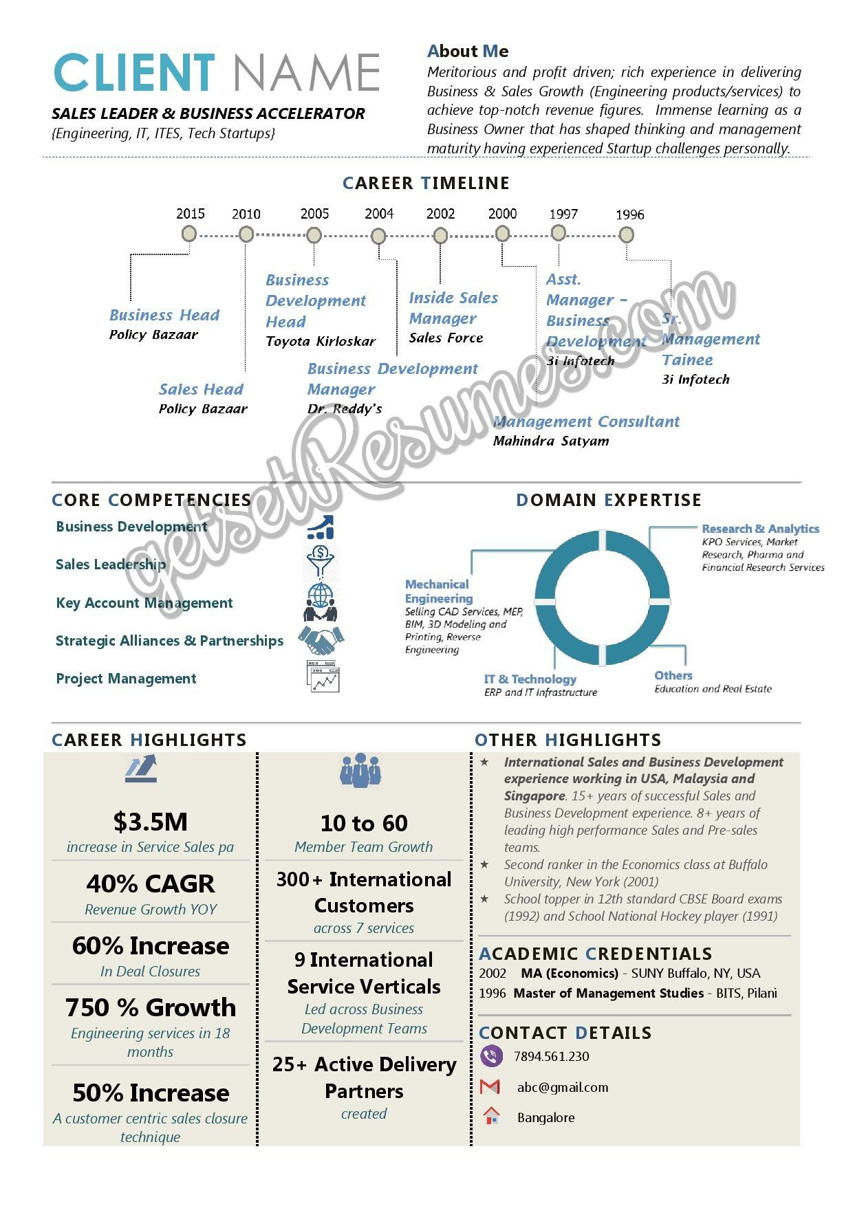 Infographic Resume for Sales Head