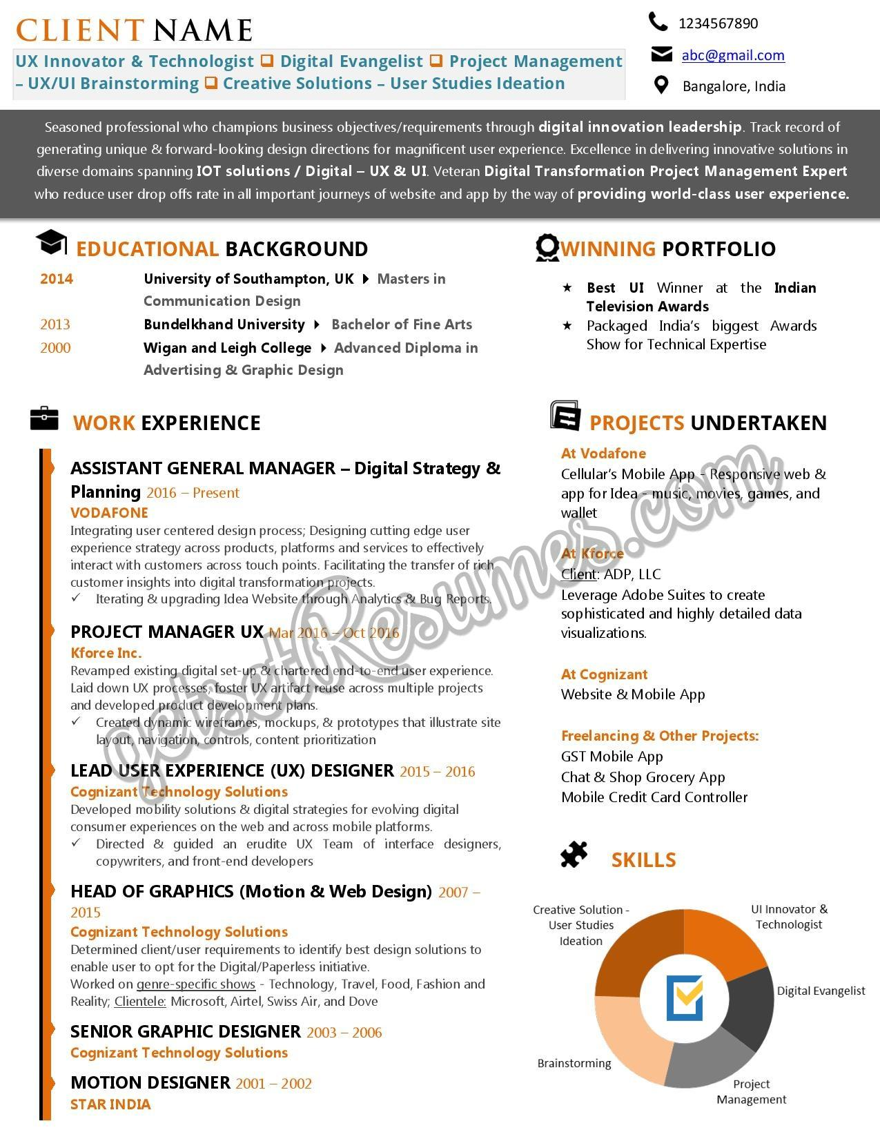 Infographic Resume for a UX Professional