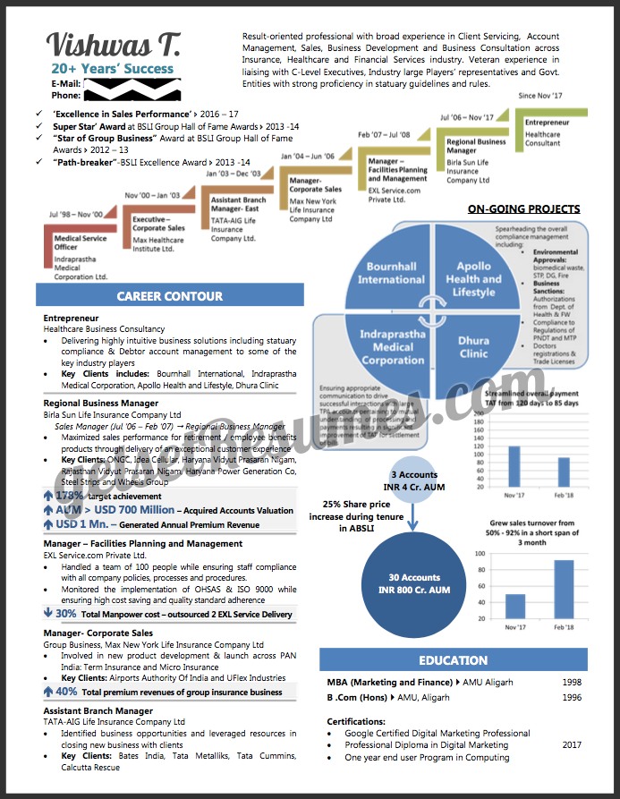 Infographic Visual Resume for a Senior Management professional / Entrepreneur