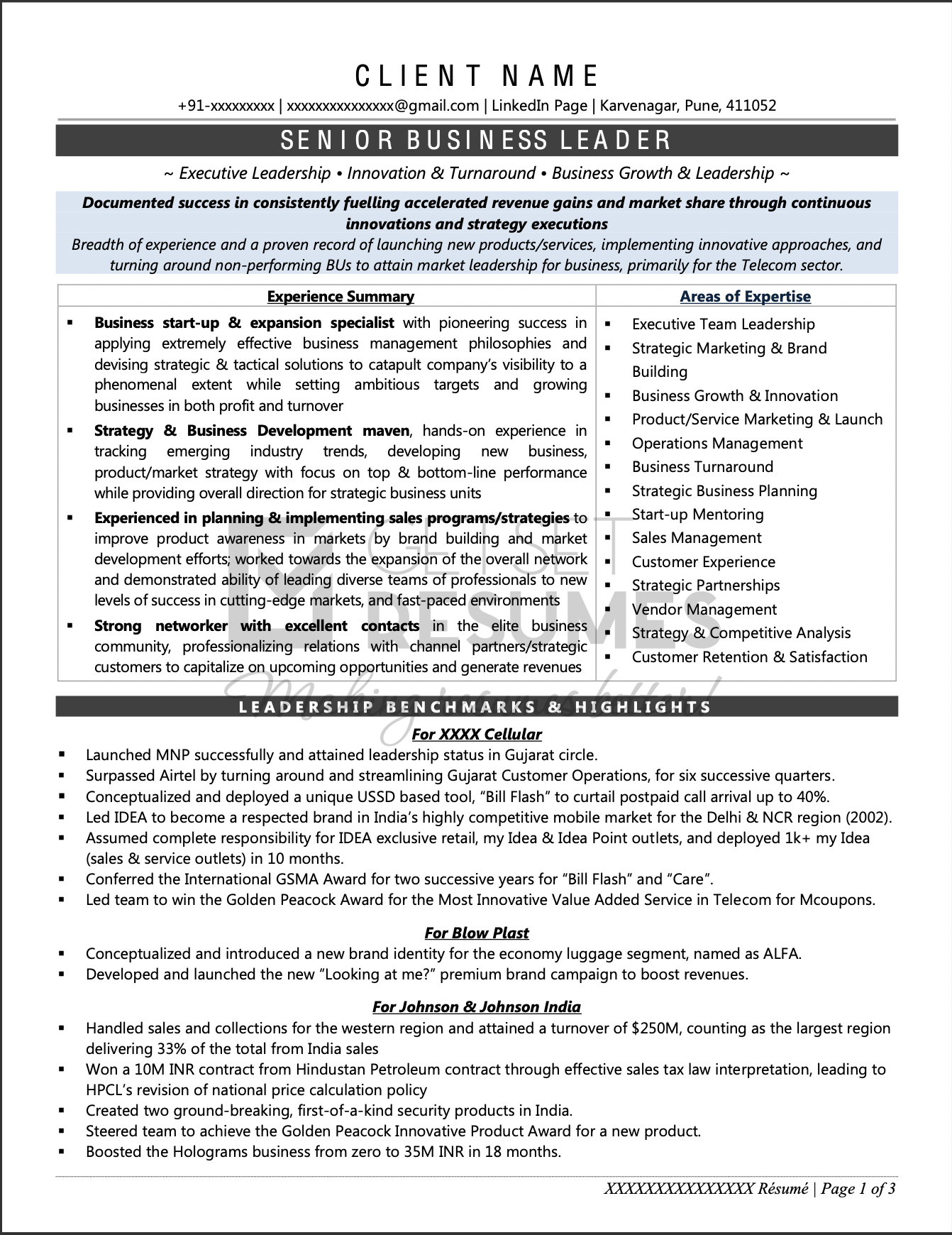 Sample Resume of Vice President - Customer Service & Operations in Telecom